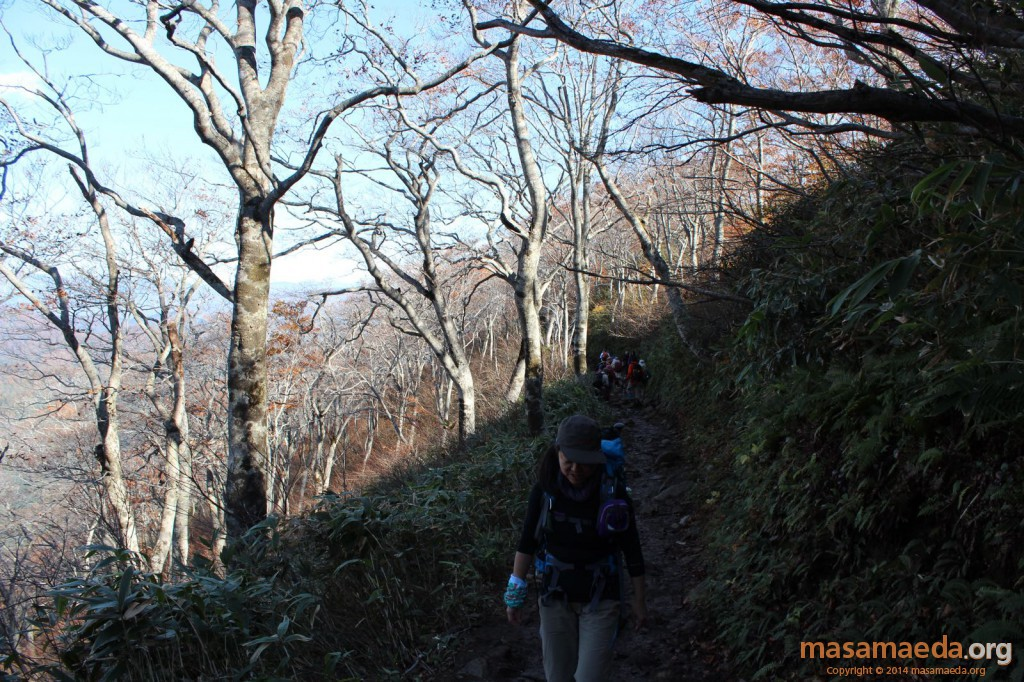 しばらく日陰の登山道