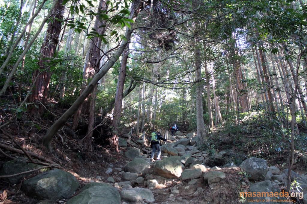 岩の目立つ御幸ヶ原コース