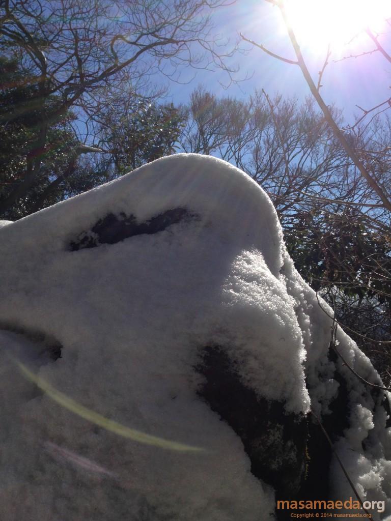 岩に積もった雪