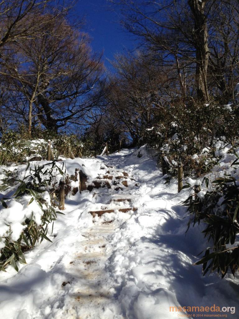 モフモフの雪