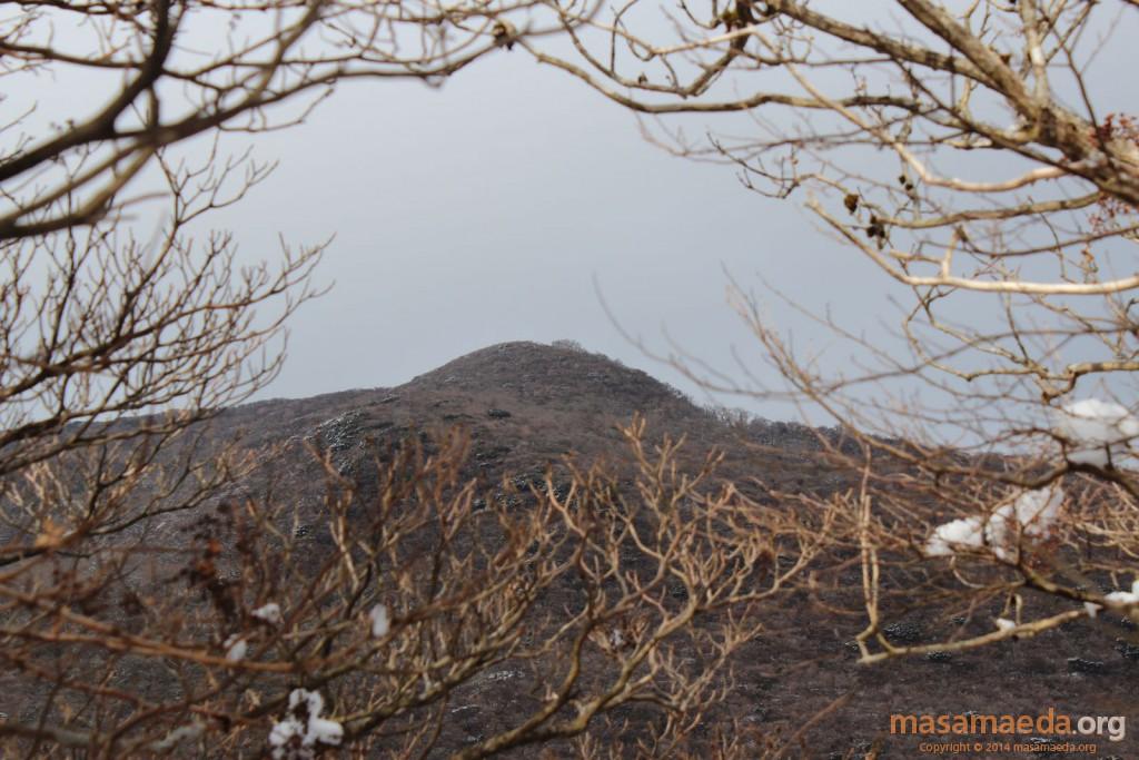 特徴的な山容の神山