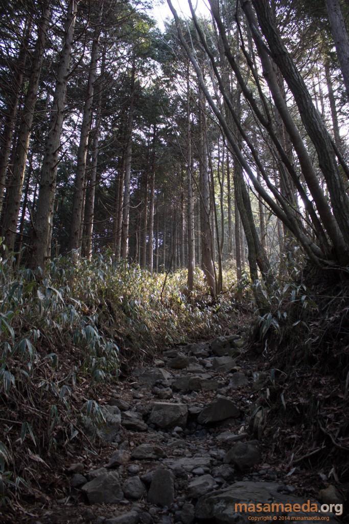 乙女峠までの道