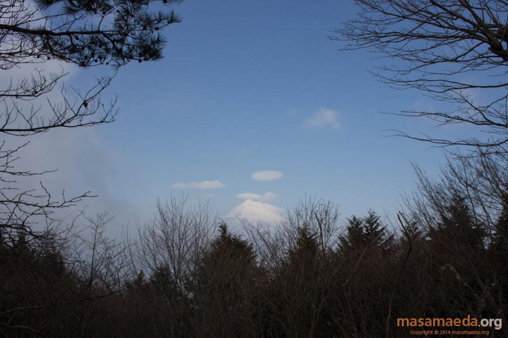 乙女峠の展望台からの富士山