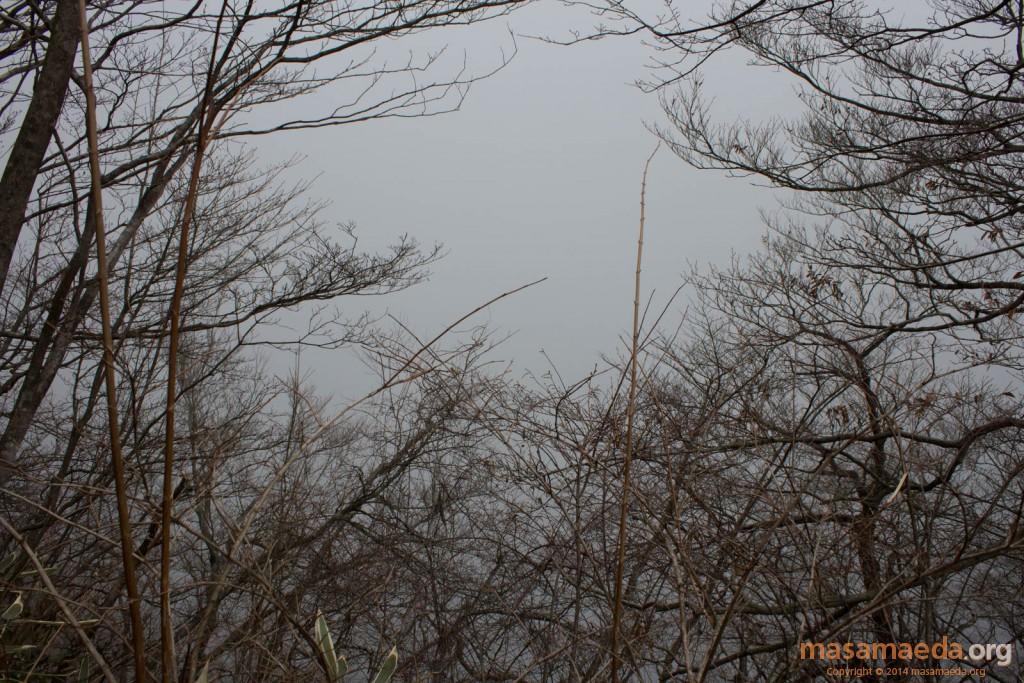 箱根の外側は濃密な雲の中